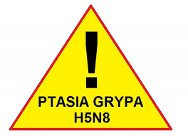 270_ptasia_grypa.png,